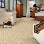 Best cleaner carpets in Grand Prairie