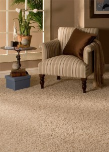 Carpet cleaning in Flower Mound after water damage