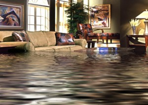 Specialist repairs water damage in Dallas home