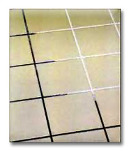Get Dr. Clean to brighten your home with clean grout.
