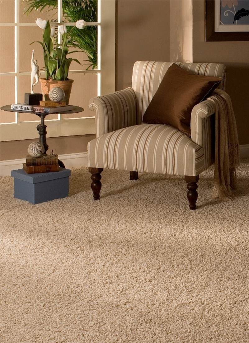 Carpet cleaning after water damage Flower Mound