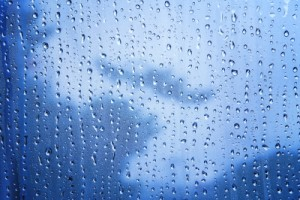 More rain for The Colony? Still dealing with flooded carpets? Call us to handle all of your water extraction needs!